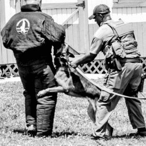 Patrol Dog Handler