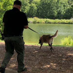 Tracking Dog Handler